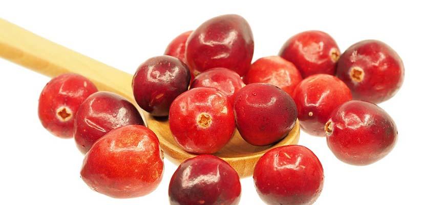 Beneficios de los arándanos rojos