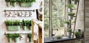 Huerto interior de plantas aromáticas