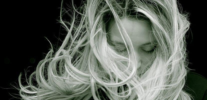 Raíz del pelo