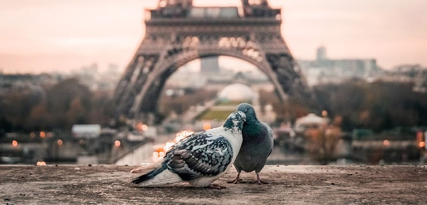 Viajes en pareja