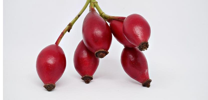 Aceite de rosa de mosqueta