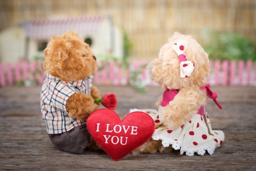 osos amor planotico