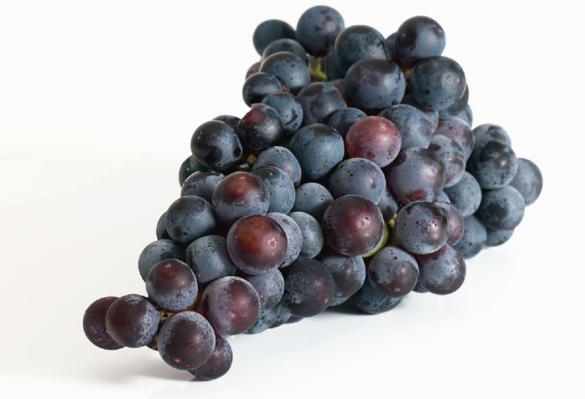 alimentos para mejorar la elasticidad de la piel