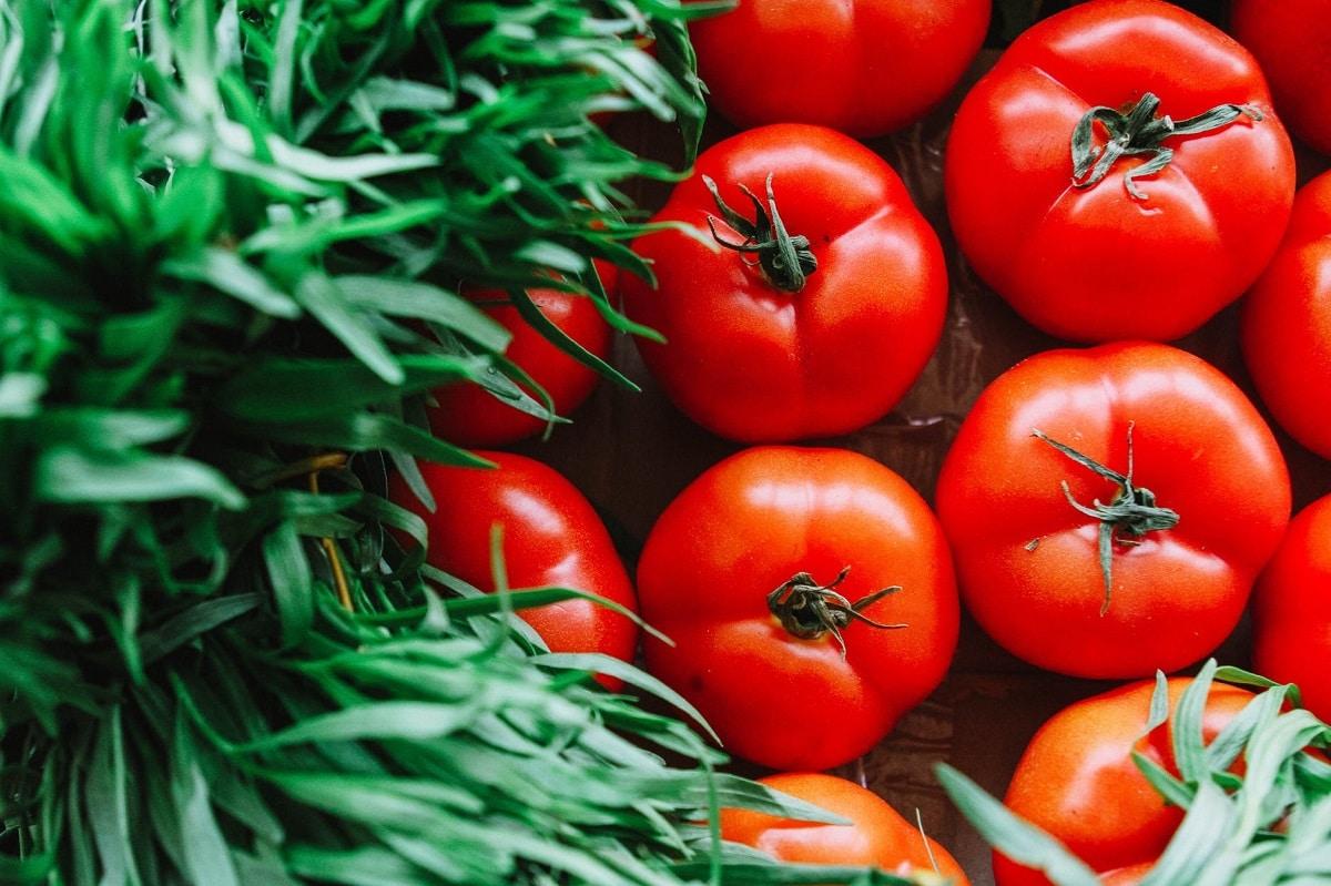 tomates para cuidar salud