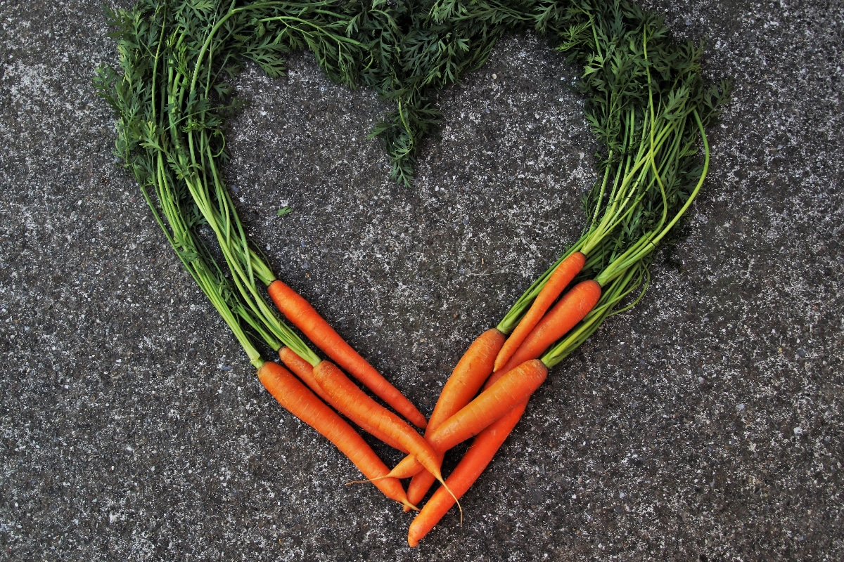 aceite zanahoria beneficios