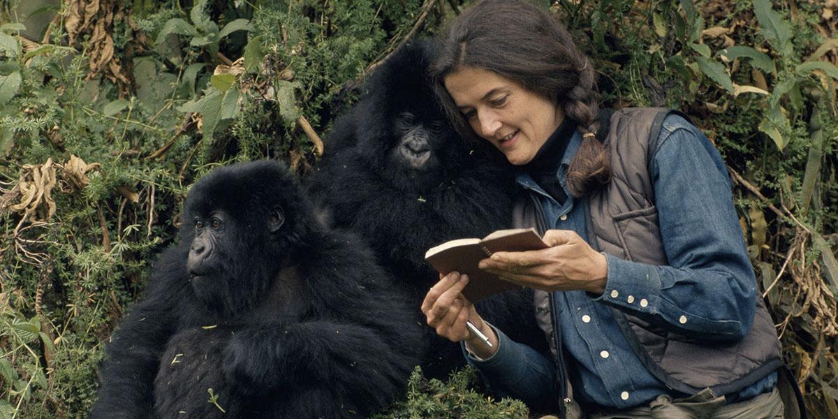 Dian Fossey