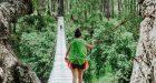 Ecoturismo, prepara tus vacaciones de verano