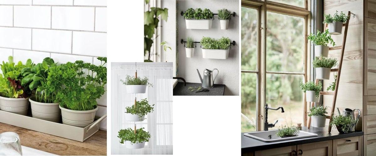 Jardín de aromáticas en la cocina