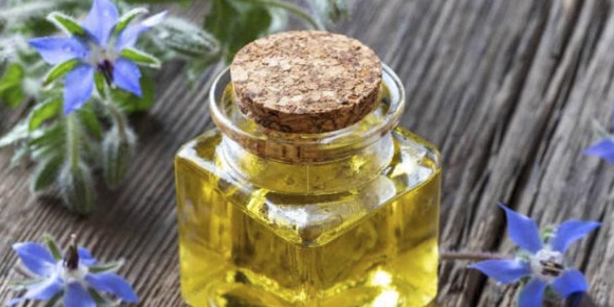 Beneficios del aceite de borraja