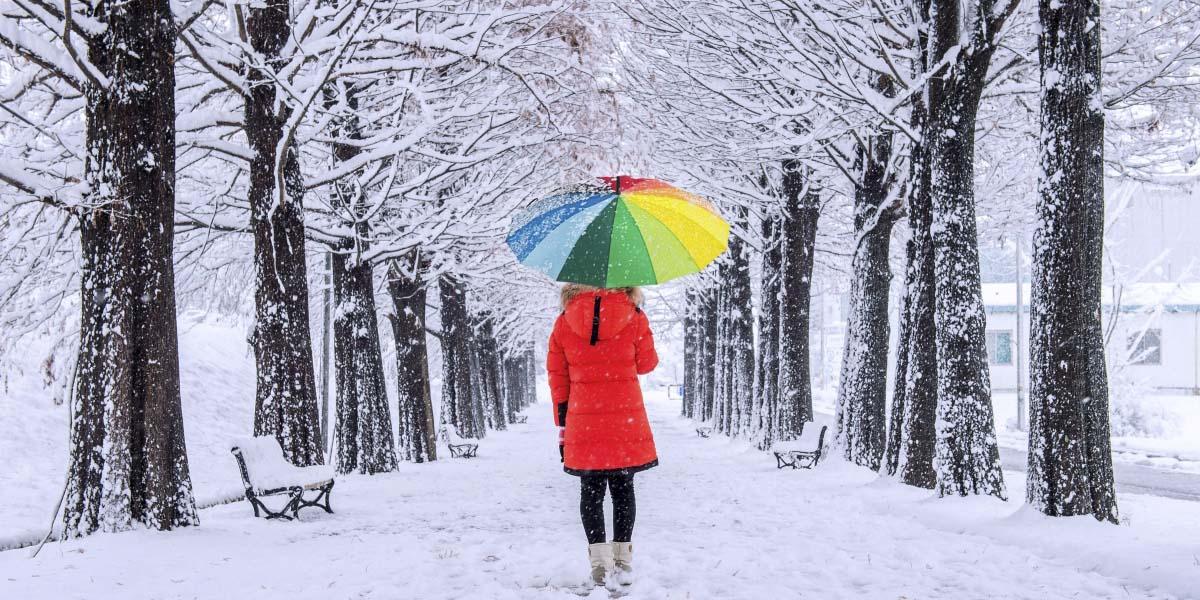 Invierno frío