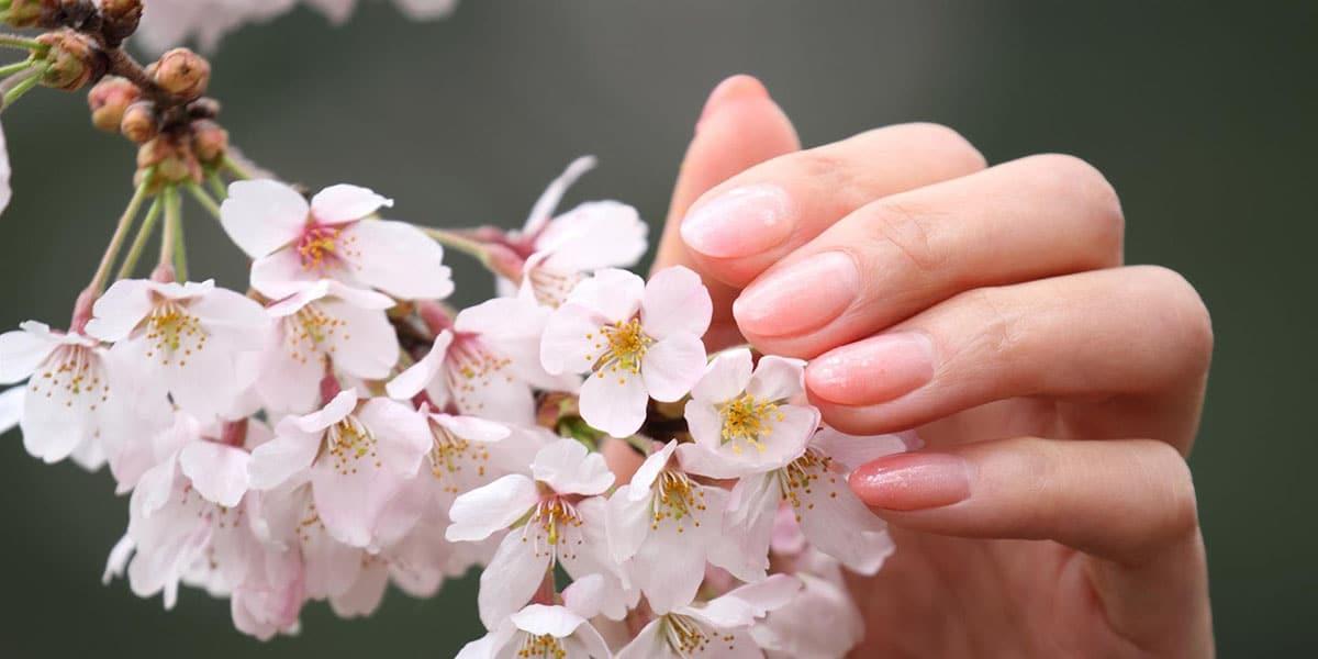 Manicura japonesa