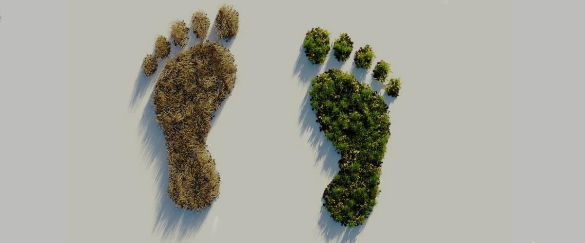 Huella ecoógica