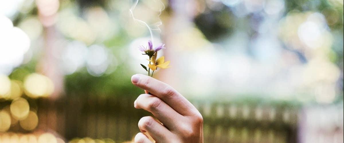 Claves para evitar los malos olores