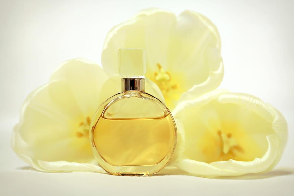 Los mejores perfumes para las mujeres más jóvenes