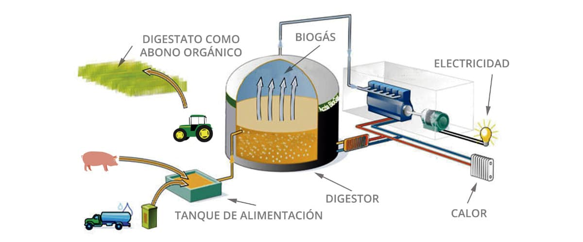 Reciclaje de materia orgánica