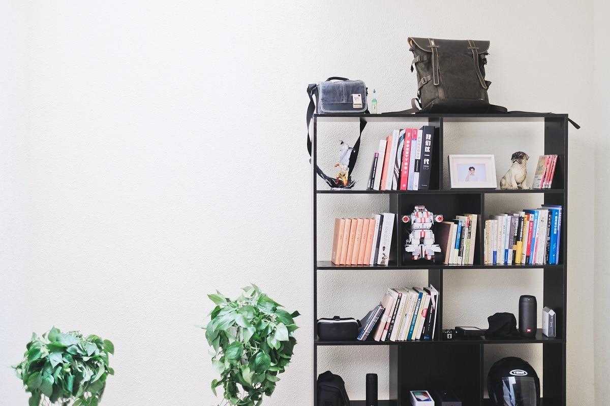 Ideas para organizar libros