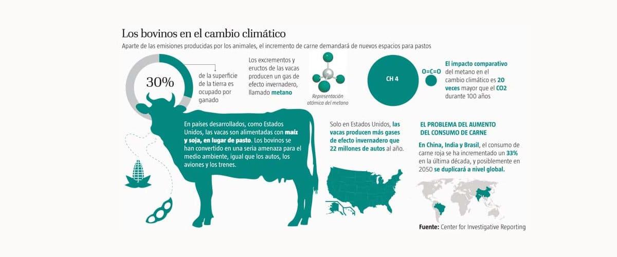 Impacto ambiental bovinos