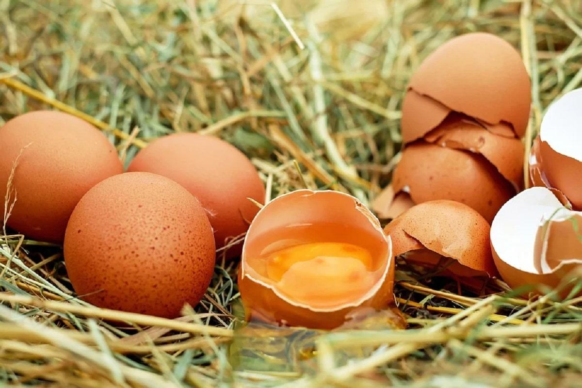 Batido de proteínas con huevo