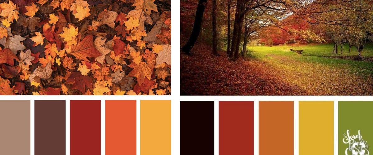 Paleta de color de Otoño