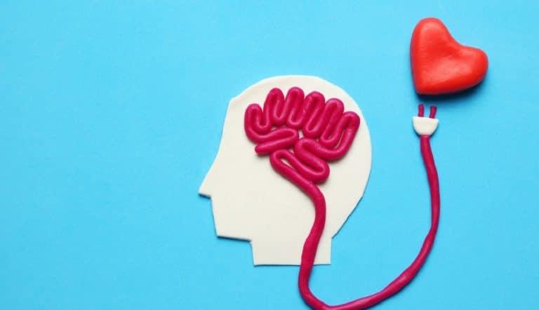 amor cerebro