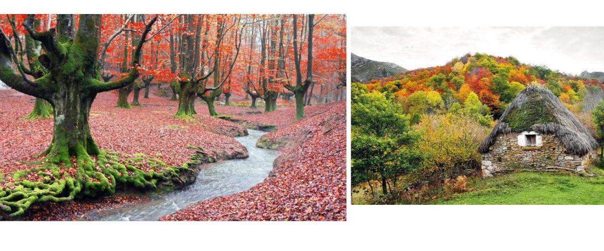 Parques naturales de Gorbeia y Somiedo
