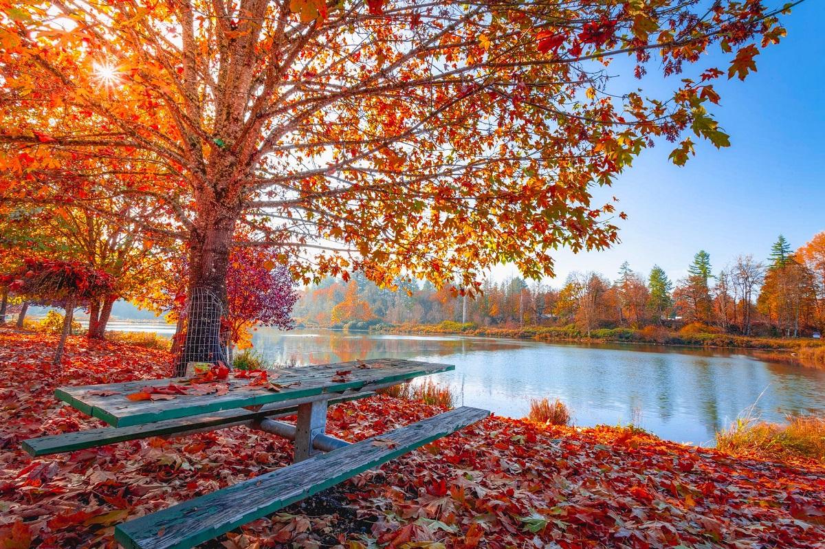 cómo afecta el otoño a la salud